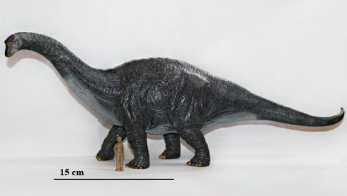 Реконструкция динозавра из рода апатозавров (Apatosaurus Marsh, 1877)...